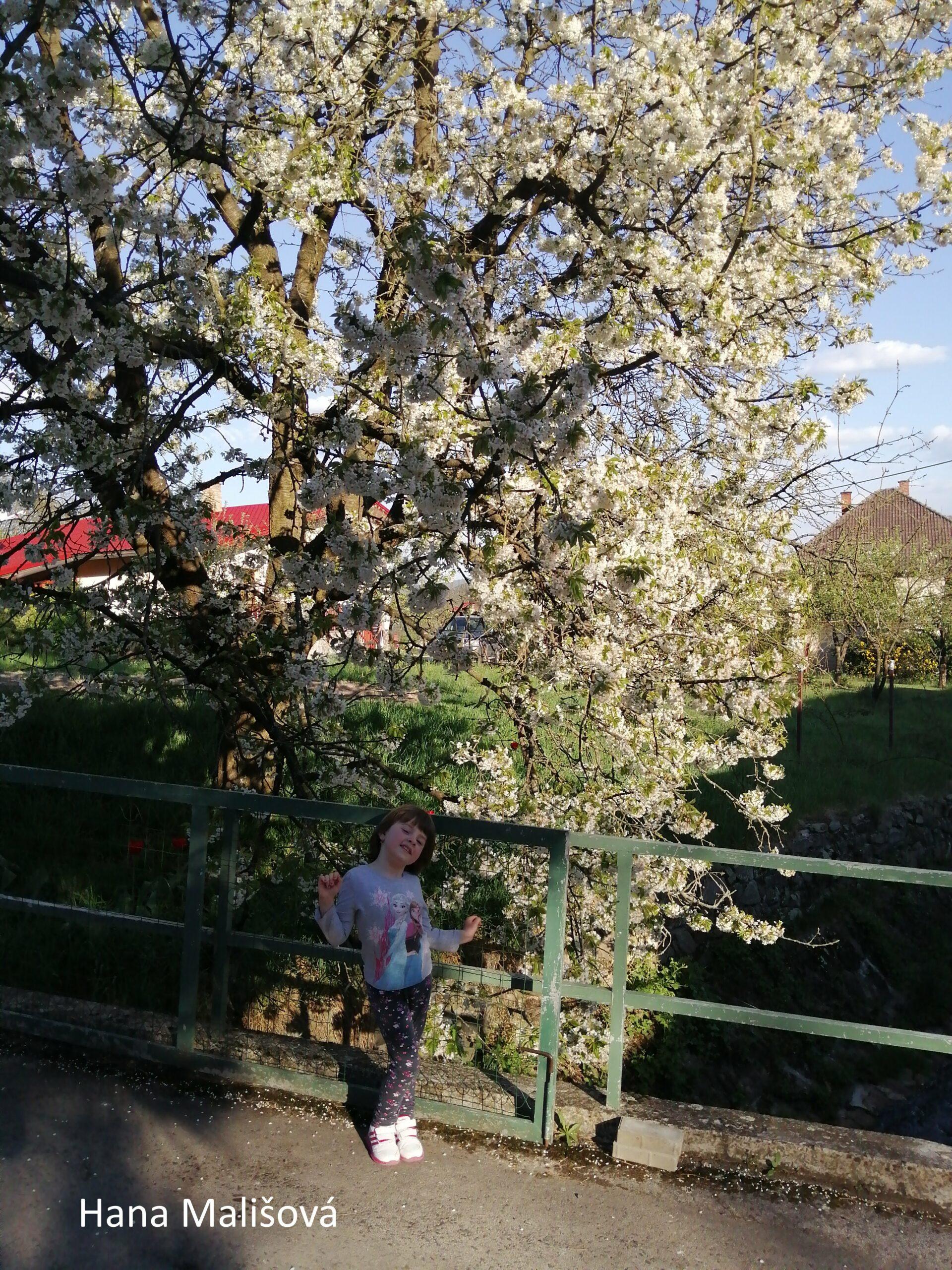 2019-05-13 – Jarné krásy okolo nás